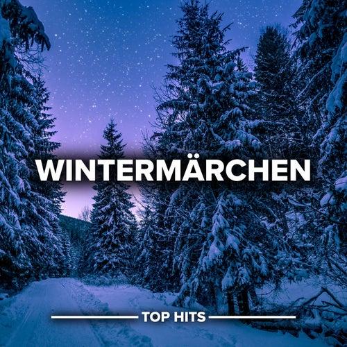 Wintermärchen von Various Artists