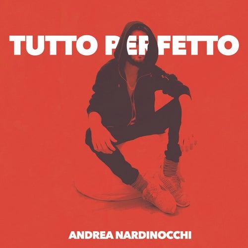 Tutto Perfetto di Andrea Nardinocchi