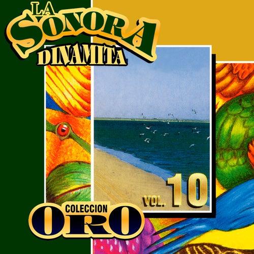 Colección Oro la Sonora Dinamita (Vol. 10) von La Sonora Dinamita