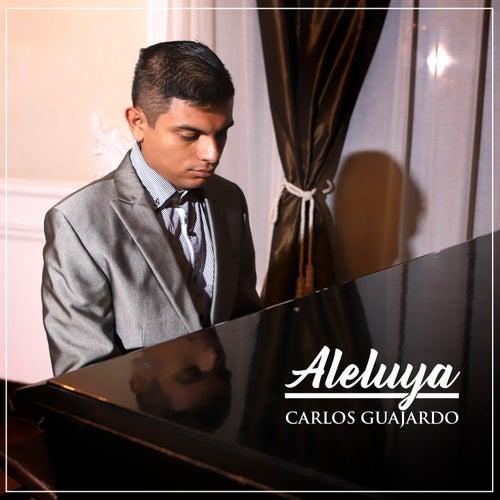 Aleluya by Carlos Guajardo
