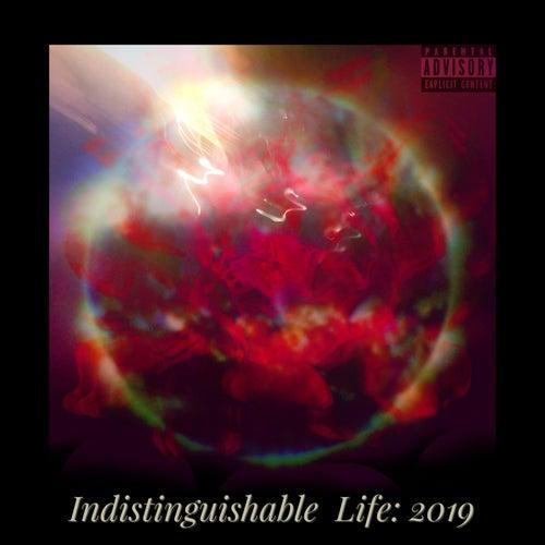 Indistinguishable Life: 2019 von Composure Artistry Group