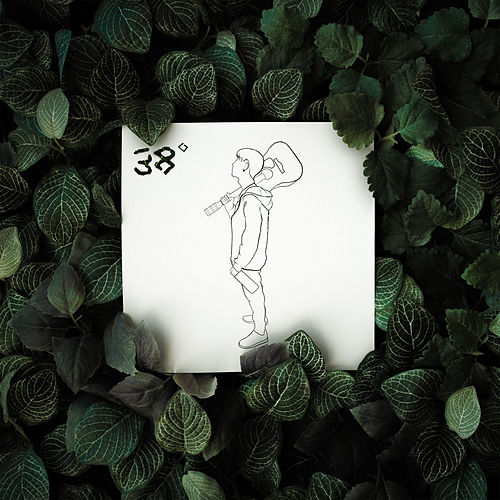 38° by Walls