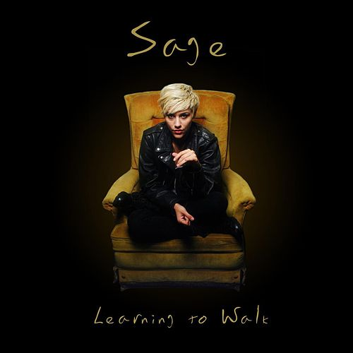 Learning To Walk de Sage
