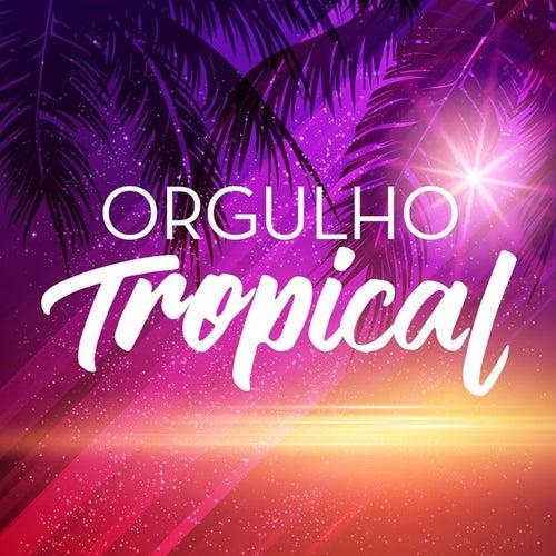 Orgulho Tropical de Various Artists