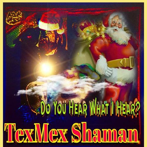 Do You Hear What I Hear ? de Texmex Shaman
