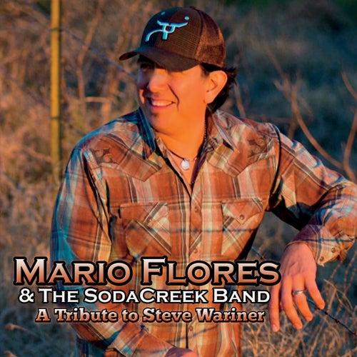 A Tribute to Steve Wariner de Mario Flores