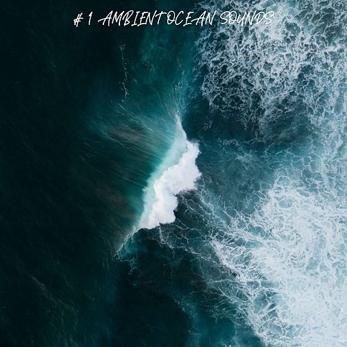# 1 Ambient Ocean Sounds by Ocean Sounds (1)