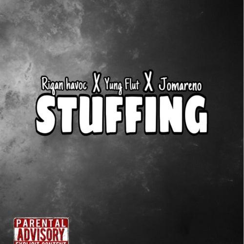 Stuffing de Riqan Havoc