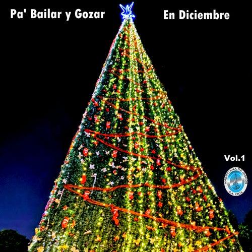 Pa' Bailar y Gozar en Diciembre, Vol. 1 by German Garcia