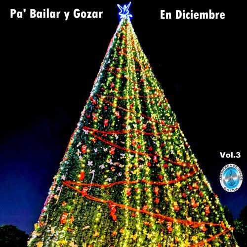 Pa' Bailar y Gozar en Diciembre, Vol. 3 by German Garcia