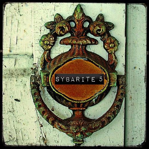 Disturb the Silence de Sybarite5