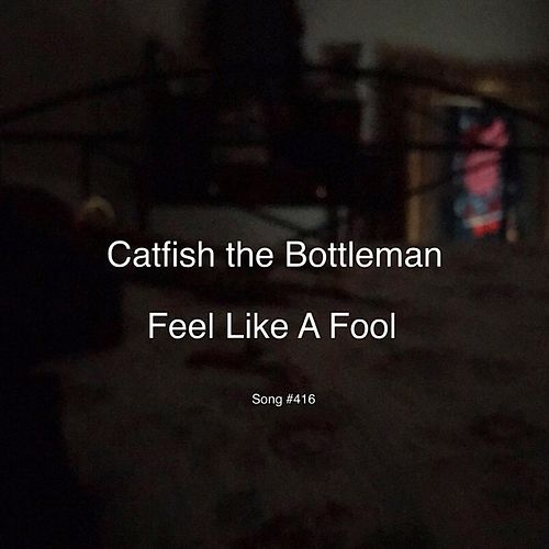 Feel Like a Fool by Catfish and the Bottlemen