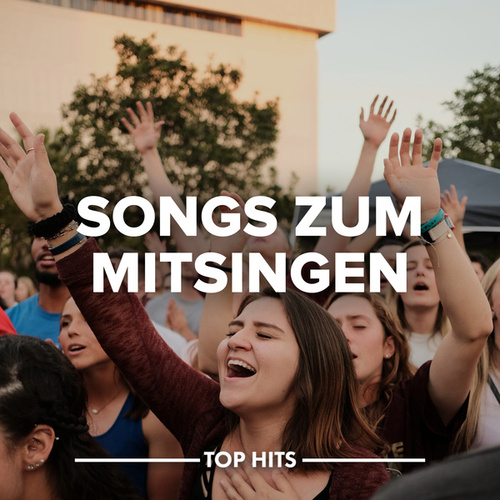 Songs zum Mitsingen von Various Artists