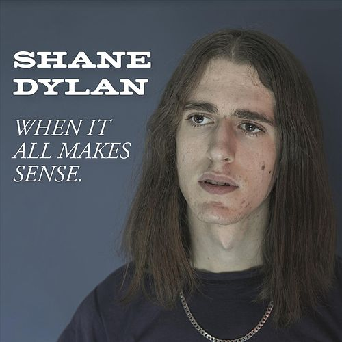 When It All Makes Sense. by Shane Dylan