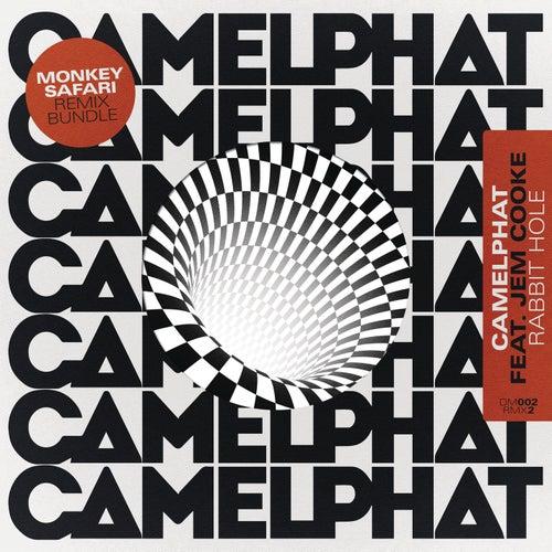 Rabbit Hole (Monkey Safari Remixes) by CamelPhat