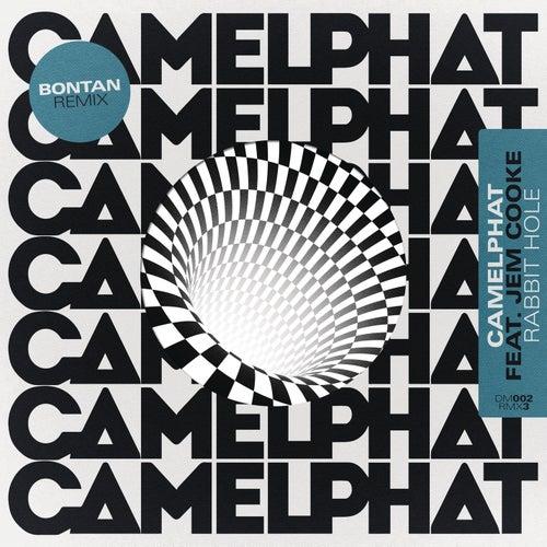 Rabbit Hole (Bontan Remix) by CamelPhat