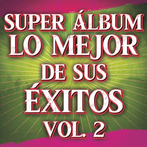 Super Álbum Lo Mejor De Sus Éxitos Vol. 2 by Various Artists