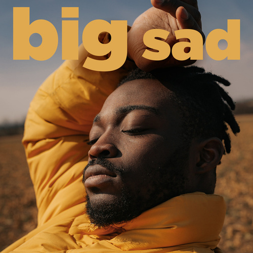 Big Sad de Various Artists