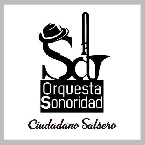 Ciudadano Salsero by Orquesta Sonoridad