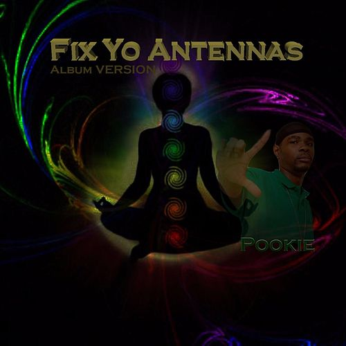 Fix Yo Antennas (Album Version) by Pookie