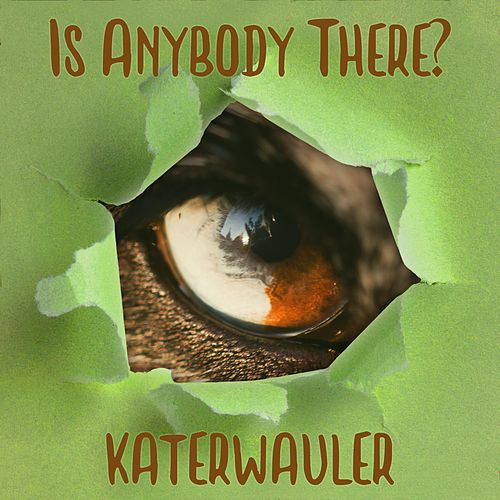 Is Anybody There? by Katerwauler