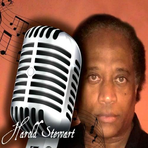 The No Hate Zone von Harold Stewart