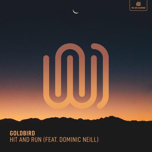 Hit and Run by Goldbird