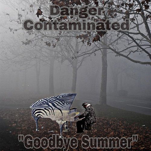 Goodbye Summer by Danger Contaminated