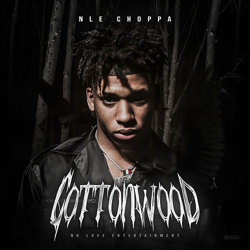 Cottonwood di NLE Choppa