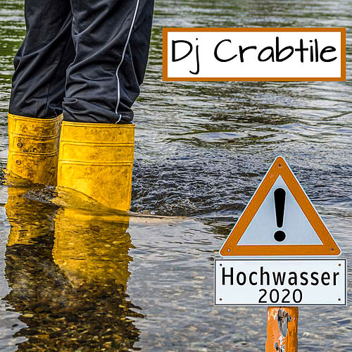 Hochwasser 2020 (Instrumental version) by Dj Crabtile