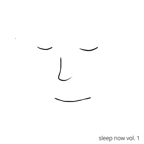 Sleep Now, Vol. 1 by Sleepmee