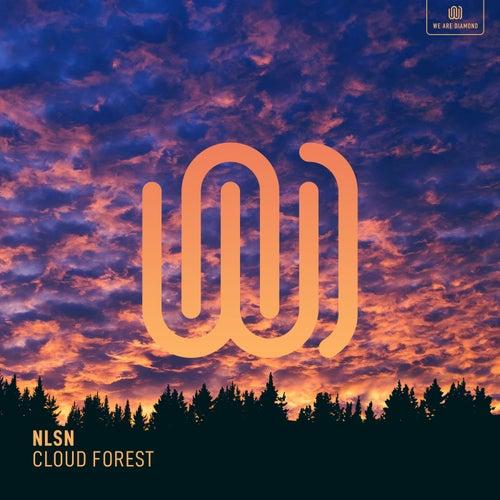 Cloud Forest de Nlsn