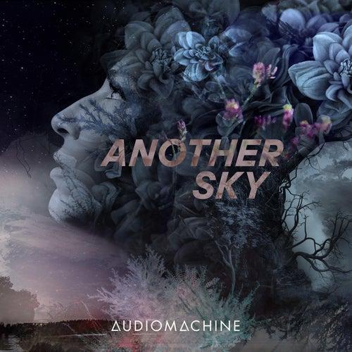 Another Sky van Audiomachine