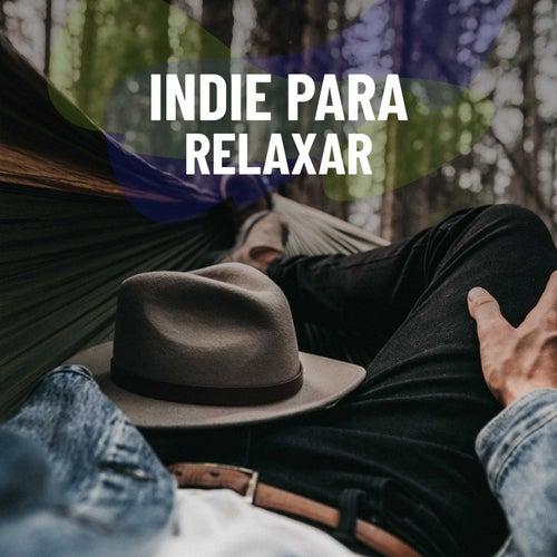 Indie Para Relaxar van Various Artists