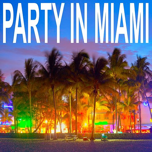 Party In Miami de Various Artists