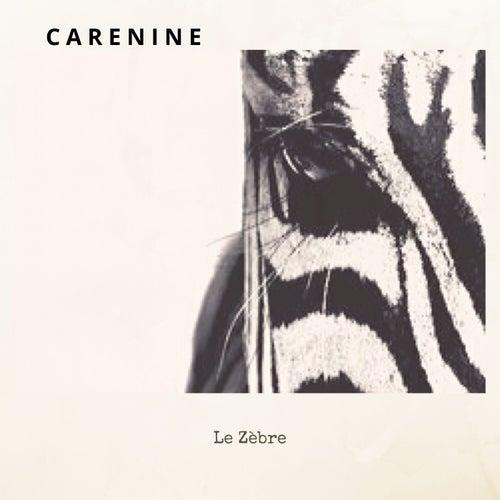 Le zèbre de Carenine