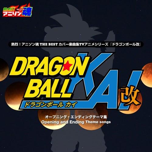 Netsuretsu! Anison Spirits the Best -Cover Music Selection- TV Anime Series ''Dragon Ball Kai'' de Kyo-1