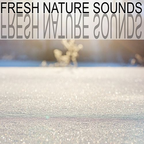 Fresh Nature Sounds by Nature Sounds (1)