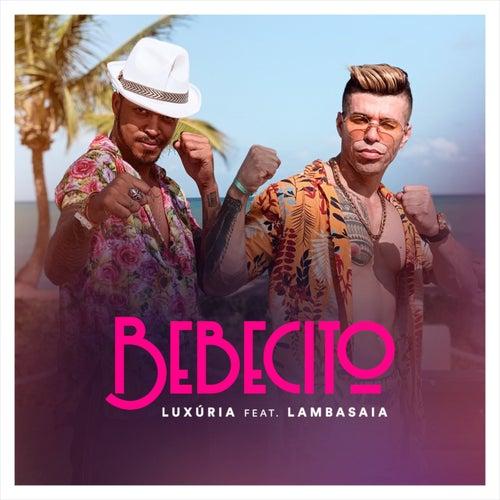 Bebecito by Luxúria