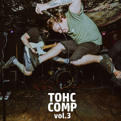 T O H C Comp, Vol. 3 de Various Artists