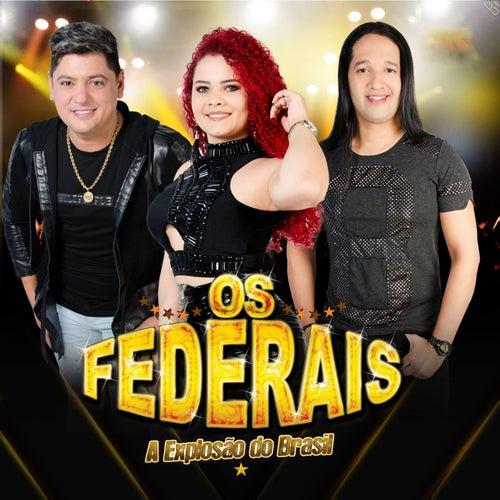 Os Federais von Rodrigo Alves Cantor