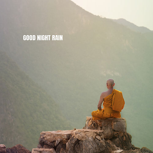 Good Night Rain de White Noise Therapy (1)