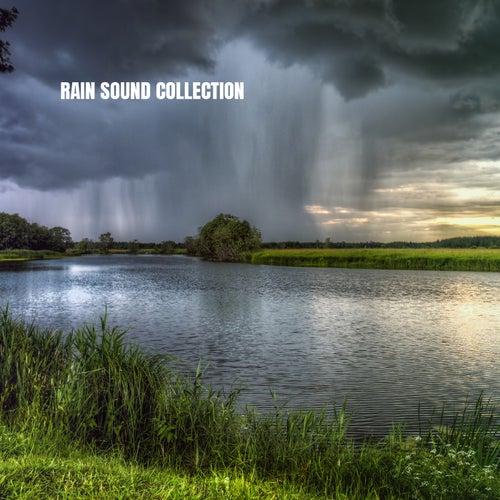Rain Sound Collection von Rain for Deep Sleep (1)