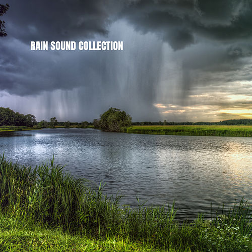 Rain Sound Collection by Rain for Deep Sleep (1)