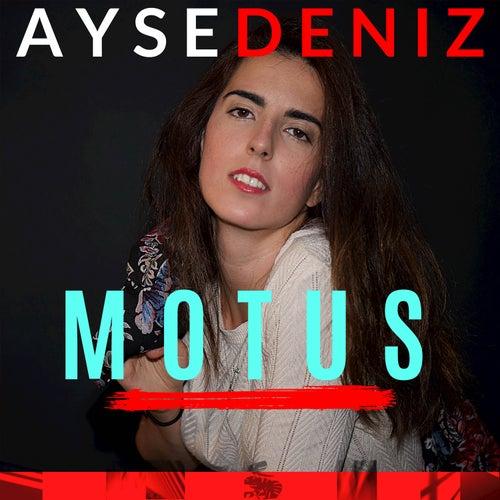 Motus von Aysedeniz Gokcin