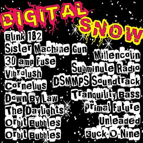 Digital Snow (Music Motion Picture Show) von Various Artists