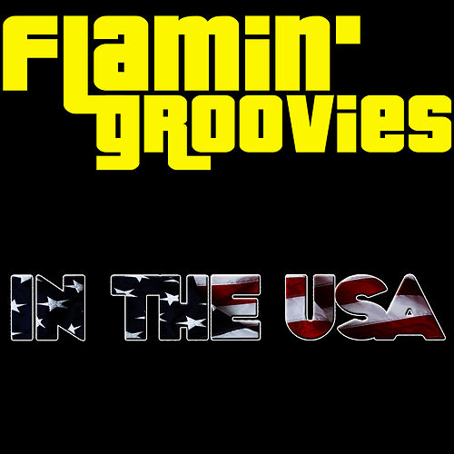 In The USA by The Flamin' Groovies