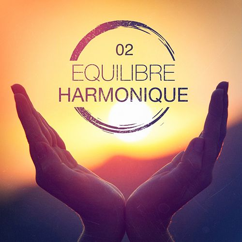 Equilibre harmonique, Vol. 2 de Multi-interprètes
