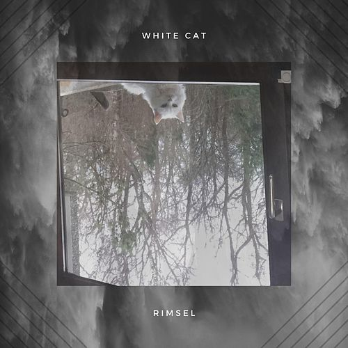 White Cat by Rimsel