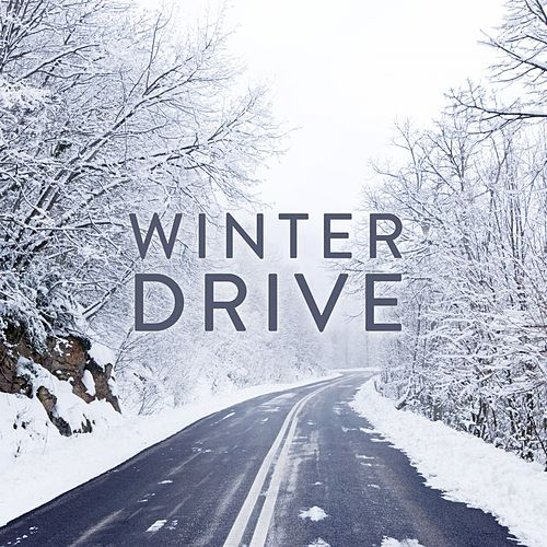 Winter Drive by Various Artists